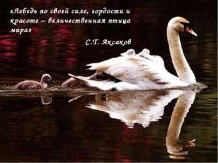 «Лебедь по своей силе, гордости и красоте – величественная птица мира» С.Т. А
