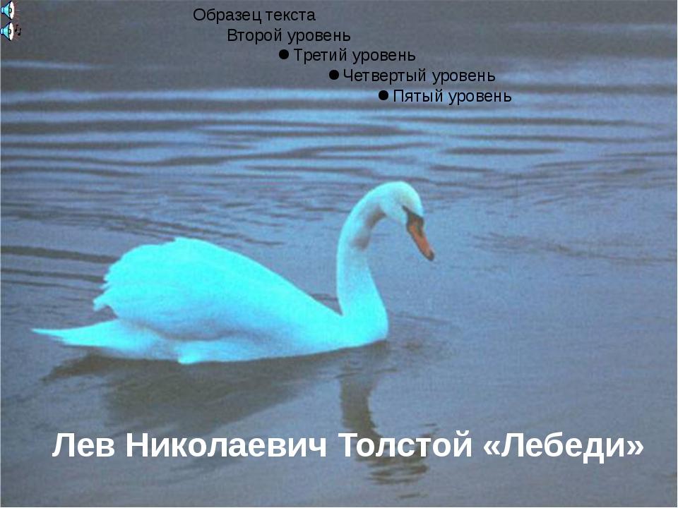 Лев Николаевич Толстой «Лебеди»