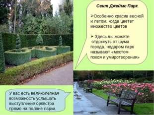 Сент Джеймс Парк Особенно красив весной и летом, когда цветет множество цвето