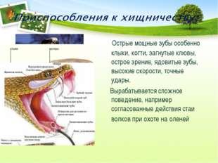 Острые мощные зубы особенно клыки, когти, загнутые клювы, острое зрение, ядо
