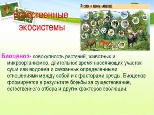 Естественные экосистемы Биоценоз- совокупность растений, животных и микроорга