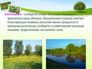 Биогеоценоз – сообщество живых организмов (биоценоз) и физической среды обит