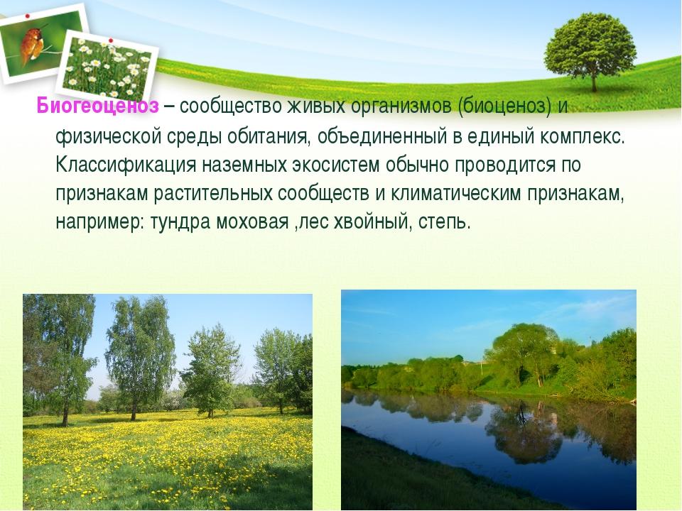Биогеоценоз – сообщество живых организмов (биоценоз) и физической среды обит...