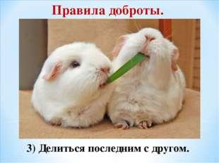 Правила доброты. 3) Делиться последним с другом.