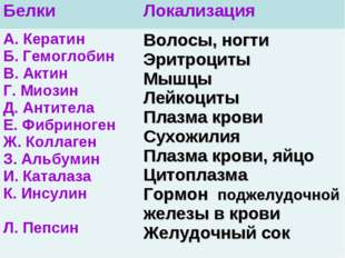 Белки Локализация А. Кератин Б. Гемоглобин В. Актин Г. Миозин Д. Антитела Е.