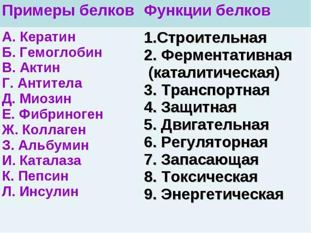 Примеры белковФункции белков А. Кератин Б. Гемоглобин В. Актин Г. Антитела Д...