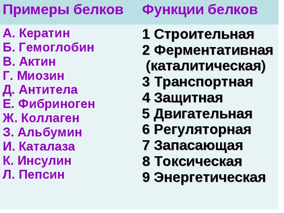 Примеры белковФункции белков А. Кератин Б. Гемоглобин В. Актин Г. Миозин Д....