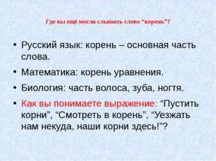 """Где вы ещё могли слышать слово """"корень""""? Русский язык: корень – основная част"""