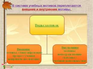 В системе учебных мотивов переплетаются внешние и внутренние мотивы.