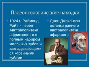 Палеонтологические находки 1924 г. Раймонд Райт - череп Австралопитека африка