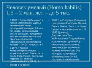 Человек умелый (Homo habilis)– 1,5 – 2 млн. лет – до 5 тыс. В 1968 г.Питер Н