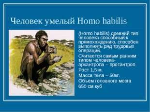 Человек умелый Homo habilis (Homo habilis) древний тип человека способный к п