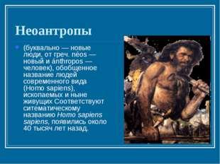 Неоантропы (буквально — новые люди, от греч. néos — новый и ánthropos — челов