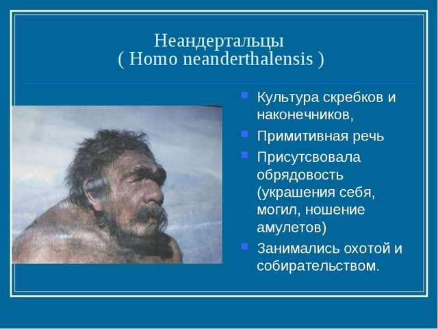 Неандертальцы ( Homo neanderthalensis ) Культура скребков и наконечников, При...