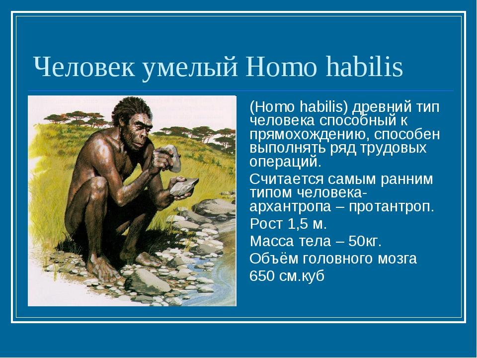 Человек умелый Homo habilis (Homo habilis) древний тип человека способный к п...