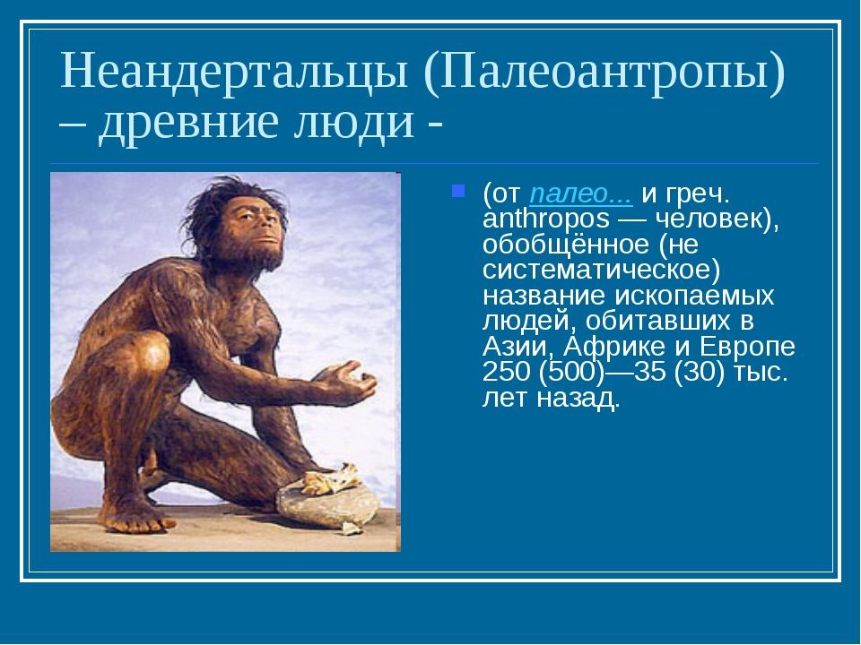 Неандертальцы (Палеоантропы) – древние люди - (от палео... и греч. anthropos...