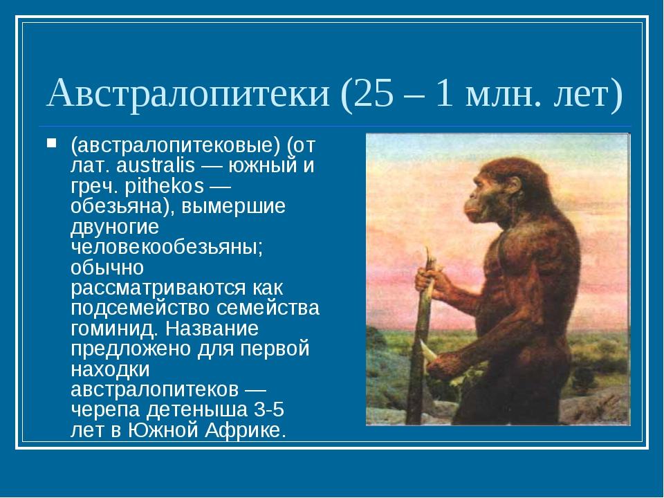 Австралопитеки (25 – 1 млн. лет) (австралопитековые) (от лат. australis — южн...