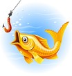 http://www.study.ru/images/fish.png