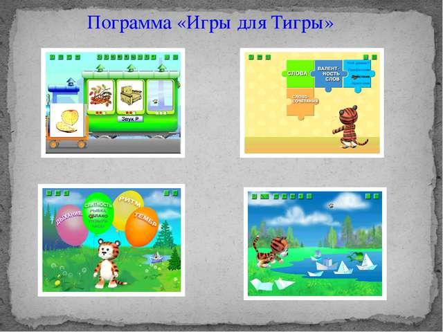 Пограмма «Игры для Тигры»
