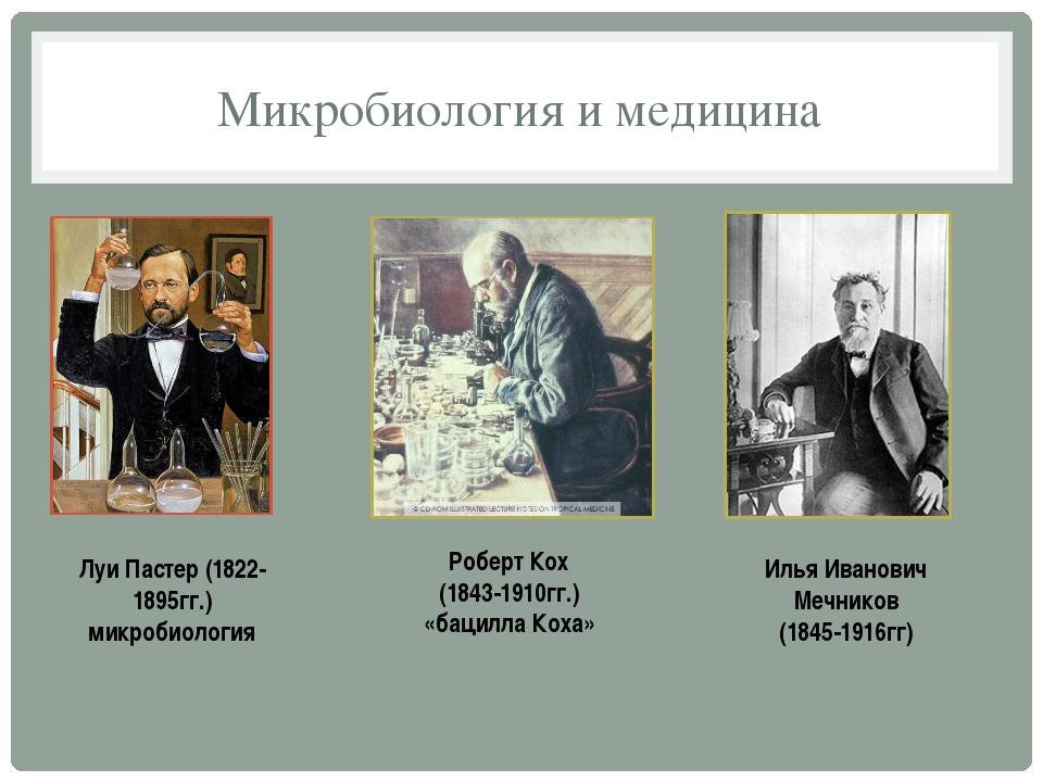 Микробиология и медицина Луи Пастер (1822-1895гг.) микробиология Роберт Кох (...