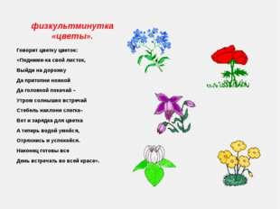 физкультминутка «цветы». Говорит цветку цветок: «Подними-ка свой листок, Выйд