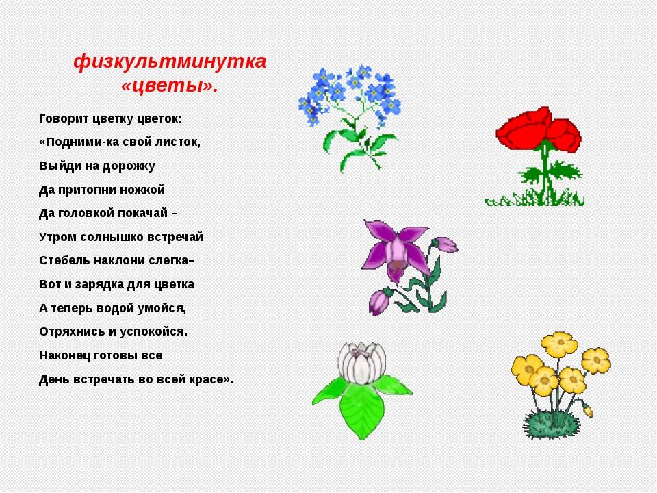 физкультминутка «цветы». Говорит цветку цветок: «Подними-ка свой листок, Выйд...