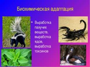 Биохимическая адаптация Выработка пахучих веществ, выработка ядов, выработка