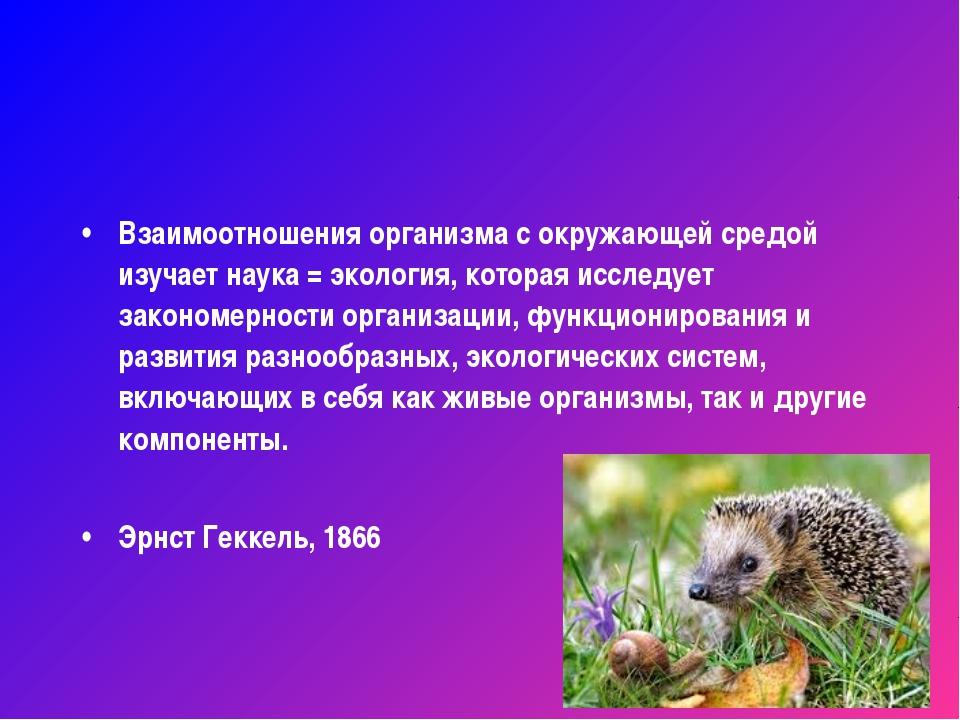 Взаимоотношения организма с окружающей средой изучает наука = экология, котор...