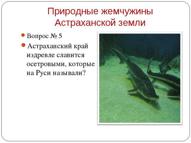 Вопрос № 5 Вопрос № 5 Астраханский край издревле славится осетровыми, котор...