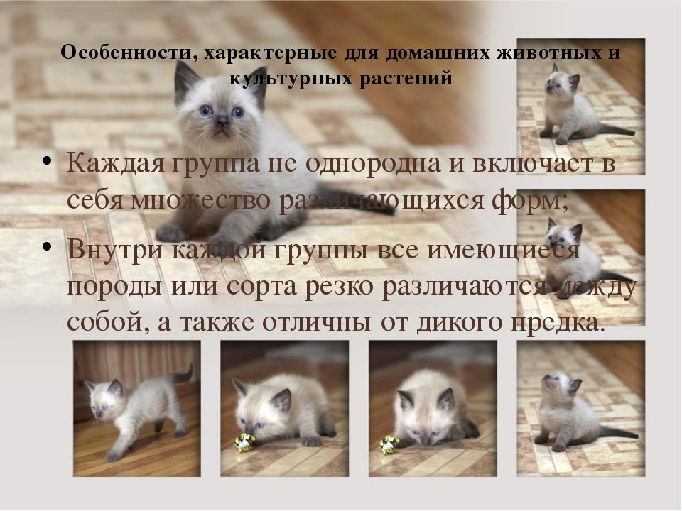 Особенности, характерные для домашних животных и культурных растений Каждая г...