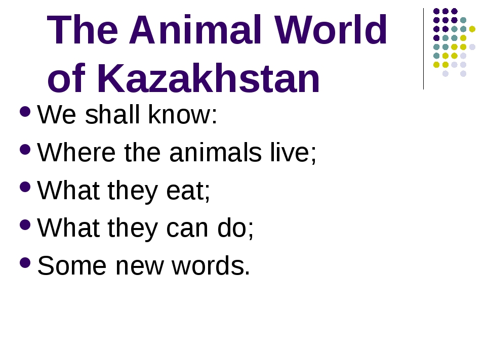 The Animal World of Kazakhstan We shall know: Where the animals live; What t...
