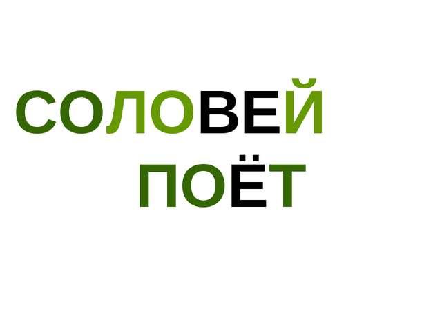 СОЛОВЕЙ ПОЁТ