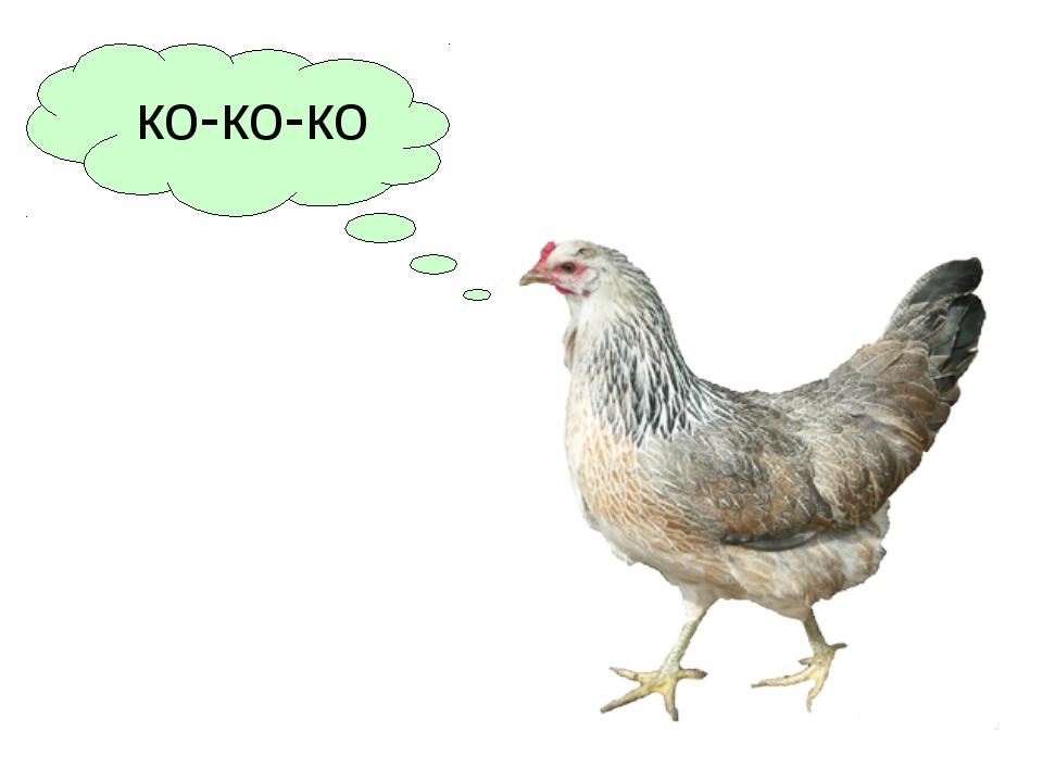 ко-ко-ко
