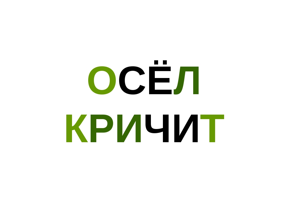 ОСЁЛ КРИЧИТ