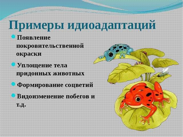 Выявите идиоадаптации у следующих животных: Задание для 1 группы Задание для...