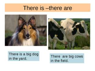 There is –there are There is a big dog in the yard. There are big cows in the