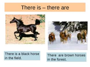 There is – there are There is a black horse in the field. There are brown hor