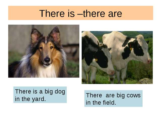 There is –there are There is a big dog in the yard. There are big cows in the...
