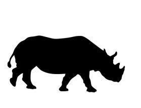 http://pixabay.com/static/uploads/photo/2013/11/28/11/29/rhino-220220_640.jpg
