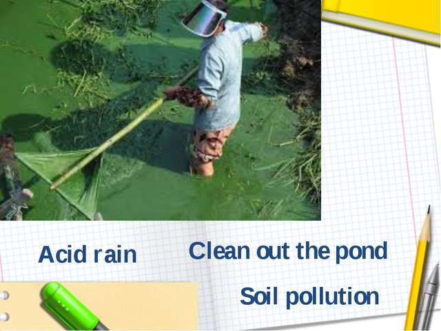 Clean out the pond Soil pollution Acid rain