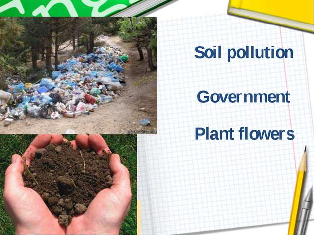 Plant flowers Soil pollution Government