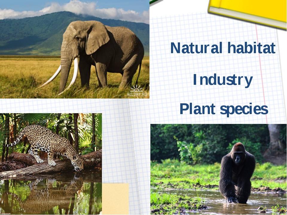 Plant species Industry Natural habitat