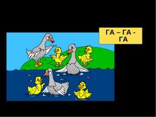 Гусятам нравится игра, Всем купаться:... ГА – ГА - ГА