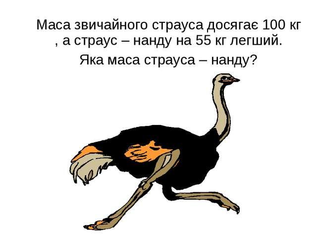 Маса звичайного страуса досягає 100 кг , а страус – нанду на 55 кг легший. Я...