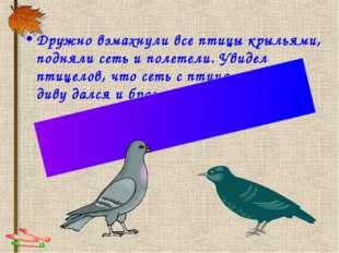 Дружно взмахнули все птицы крыльями, подняли сеть и полетели. Увидел птицелов