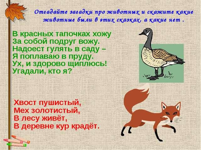 Отгадайте загадки про животных и скажите какие животные были в этих сказках,...