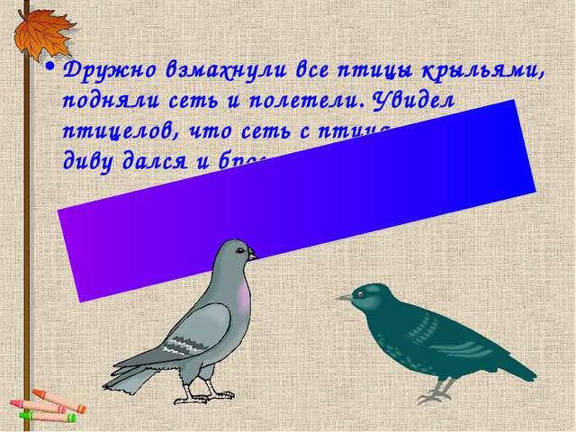 Дружно взмахнули все птицы крыльями, подняли сеть и полетели. Увидел птицелов...