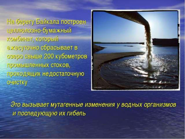 На берегу Байкала построен целлюлозно-бумажный комбинат, который ежесуточно с...