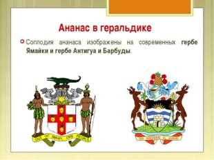 Ананас в геральдике Соплодия ананаса изображены на современных гербе Ямайки и
