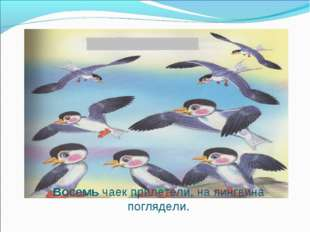 Восемь чаек прилетели, на пингвина поглядели.